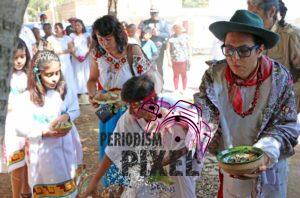 boda-masiva-con-arboles-11