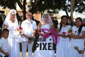 boda-masiva-con-arboles-15