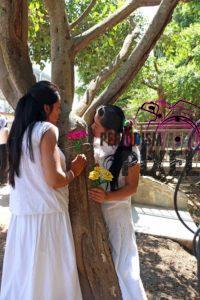 boda-masiva-con-arboles-17