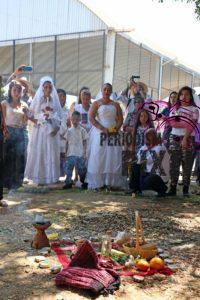 boda-masiva-con-arboles-26