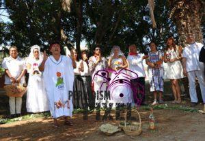 boda-masiva-con-arboles-7